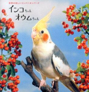 【送料無料】インコちゃんオウムちゃん [ 池渕万季 ]