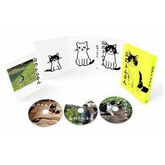 山のトムさん DVD-BOX【初回限定色】 [ 小林聡美 ]