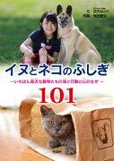 【入学】<br>イヌとネコのふしぎ101