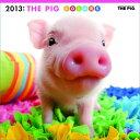 【送料無料】【ハゴロモ_ポイント5倍】THE PIG COLORS 2013 カレンダー