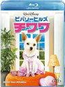 【送料無料】ビバリーヒルズ・チワワ【Blu-ray】 【Disneyzone】 [ パイパー・ペラーボ ]