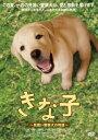 【送料無料】【定番DVD&BD6倍】きな子〜見習い警察犬の物語〜 [ 夏帆 ]