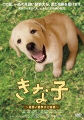 【送料無料】【定番DVD&BD6倍】きな子~見習い警察犬の物語~ [ 夏帆 ]