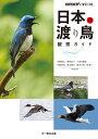 日本の渡り鳥観察ガイド (BIRDER SPECIAL) [ 先崎理之 ]