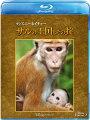 ディズニーネイチャー/サルの王国とその掟【Blu-ray】