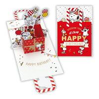 ホールマーク 誕生日カード スヌーピー兄弟バッグ 715144