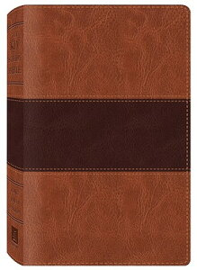 Study Bible-KJV B-KJ-BAR DUO (King James Bible) [ Barbour Publishing ]