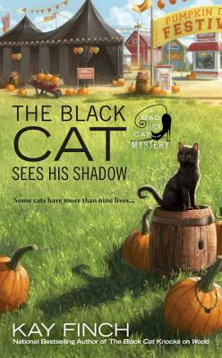 The Black Cat Sees His Shadow画像