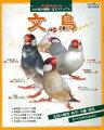 【バーゲン本】 文鳥 わが家の動物・完全マニュアル(5) 改訂・保存版