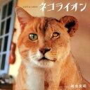 【送料無料】ネコライオン [ 岩合光昭 ]