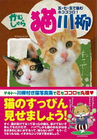 【バーゲン本】がむしゃら猫川柳