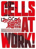 はたらく細胞 特別編(完全生産限定版)【Blu-ray】