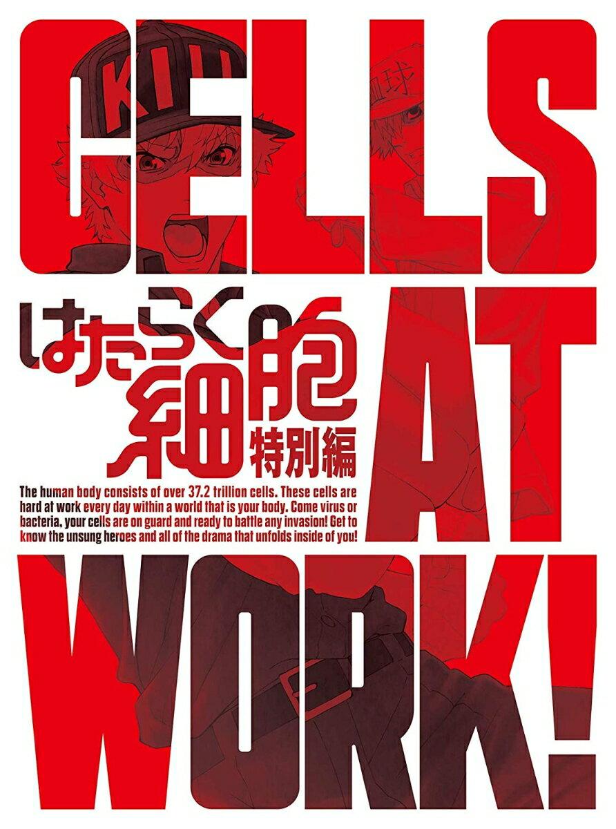 はたらく細胞 特別編(完全生産限定版)