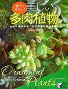 【送料無料】育ててみたい!美しい多肉植物