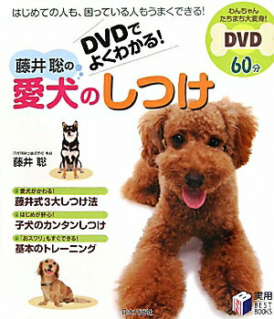 【送料無料】藤井聡の愛犬のしつけ