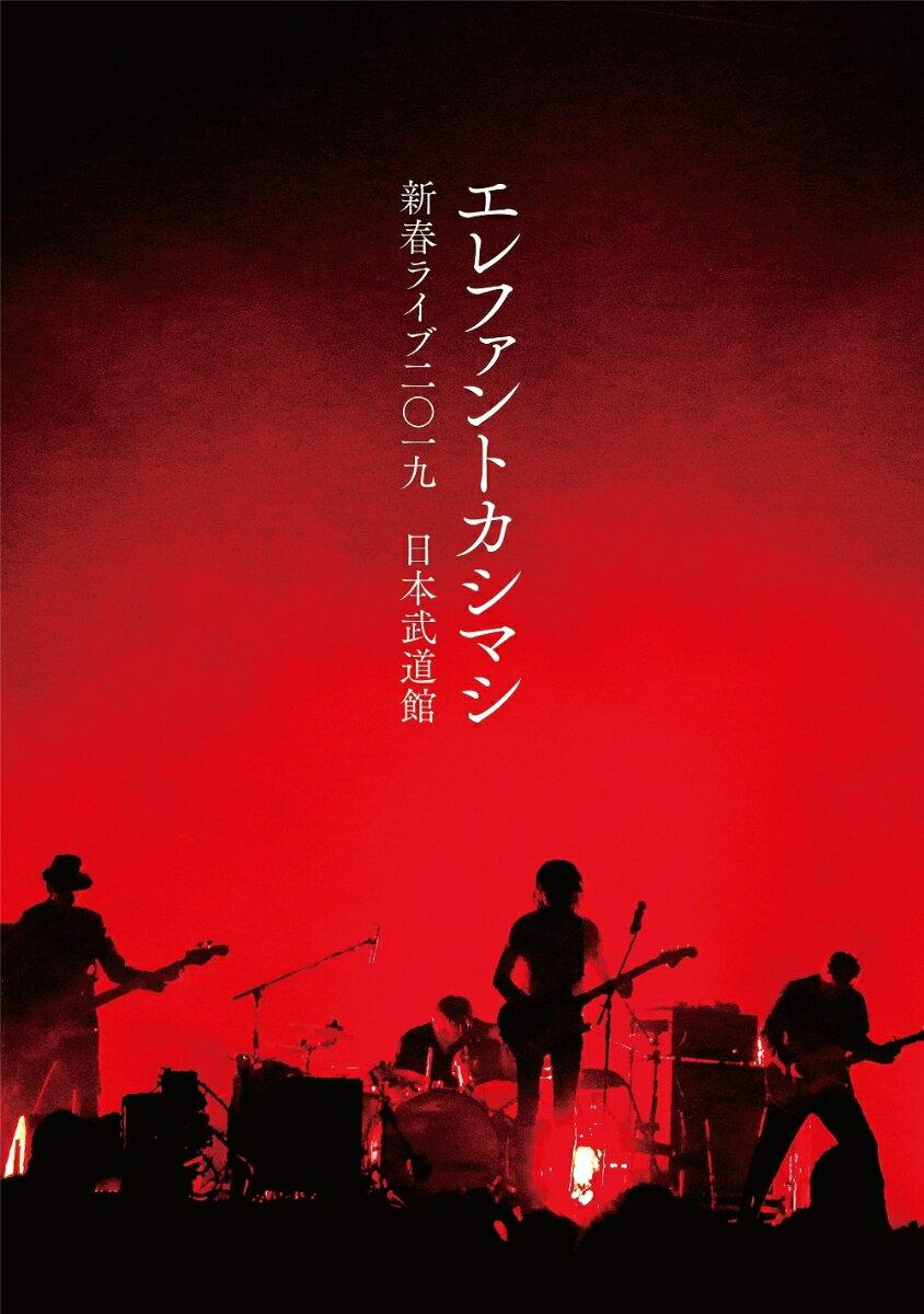 新春ライブ2019日本武道館(DVD通常盤)