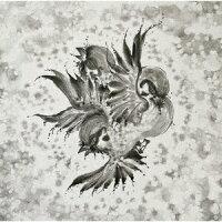 United Sparrows (初回限定盤 CD+Blu-ray)
