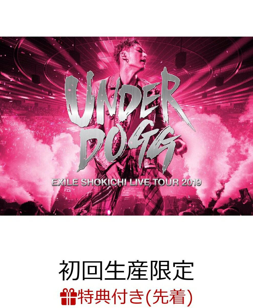 【先着特典】EXILE SHOKICHI LIVE TOUR 2019 UNDERDOGG(初回生産限定盤)(B2ポスター付き)
