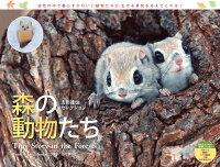 カレンダー2018 森の動物たち Tiny Story in the Forests 太田達也セレクション