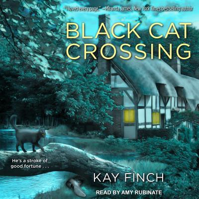 Black Cat Crossing画像