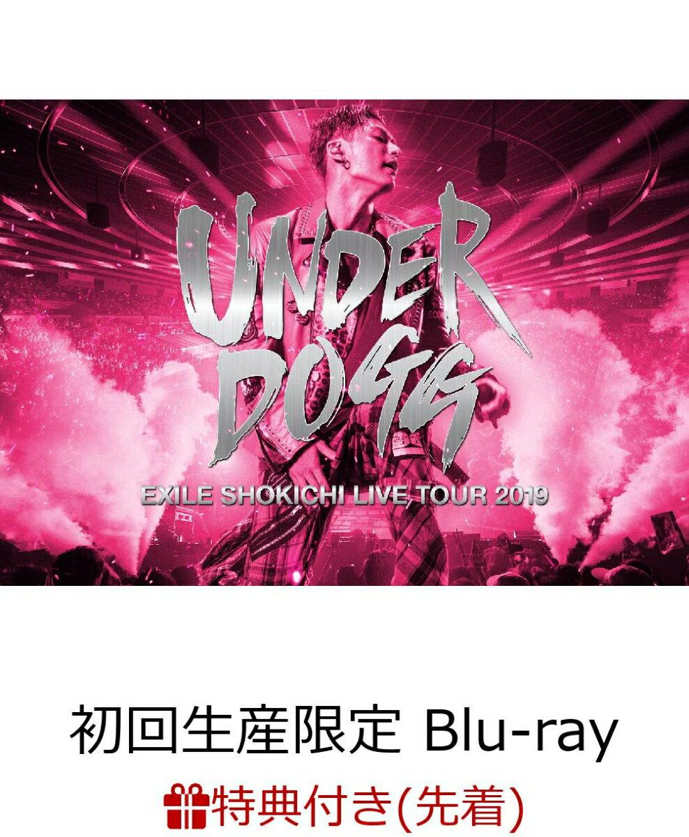 【先着特典】EXILE SHOKICHI LIVE TOUR 2019 UNDERDOGG(初回生産限定盤)(B2ポスター付き)【Blu-ray】