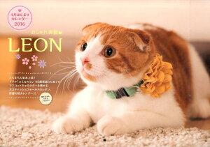 おしゃれ美猫LEON 4月はじまりカレンダー(2016) [ LEON ]