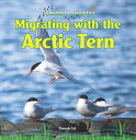 Migrating with the Arctic Tern MIGRATING W/THE ARCTIC TERN (Animal Journeys) [ Thessaly Catt ]