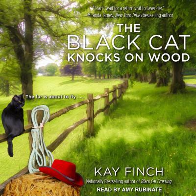 The Black Cat Knocks on Wood画像