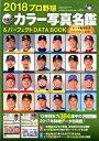 プロ野球全選手カラー写真名鑑&パーフェクトDATA BOOK(2018) (B.B.MOOK)の商品画像