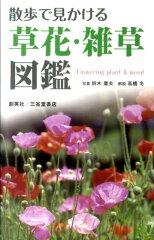 【送料無料】散歩で見かける草花・雑草図鑑