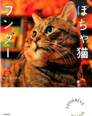 【楽天ブックスならいつでも送料無料】ぽちゃ猫ワンダー [ ケニア・ドイ ]