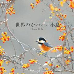 【楽天ブックスならいつでも送料無料】世界のかわいい小鳥 [ アフロ ]