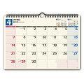 C136 NOLTYカレンダー壁掛け36 2019年1月始まり