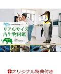 【楽天ブックス限定特典】リアルサイズ古生物図鑑 新生代編(特別描きおろしポストカード3枚)