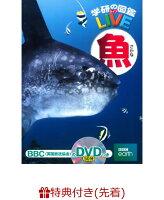 【特典つき】学研の図鑑LIVE(ライブ)魚