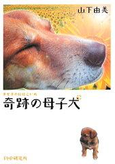 【送料無料】奇跡の母子犬 [ 山下由美 ]