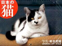 【楽天ブックスならいつでも送料無料】日本の猫カレンダー(2015) [ 岩合光昭 ]