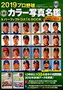 プロ野球全選手カラー写真名鑑&パーフェクトDATA BOOK(2019) (B.B.MOOK)の商品画像
