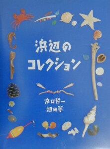 【送料無料】浜辺のコレクション