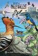 Birds of the Nile Valley: An Auc Press Nature Foldout [ Dominique Navarro ]
