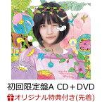 【楽天ブックス限定先着特典】サステナブル (初回限定盤 CD+DVD Type-A) (生写真付き) [ AKB48 ]