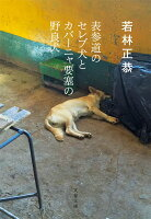 表参道のセレブ犬とカバーニャ要塞の野良犬