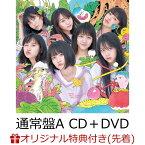 【イベント参加抽選&楽天ブックス限定先着特典】サステナブル (通常盤 CD+DVD Type-A) (生写真付き) [ AKB48 ]