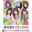 【楽天ブックス限定先着特典】サステナブル (通常盤 CD+DVD Type-B) (生写真付き) [ AKB48 ]