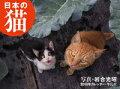2019年カレンダー 日本の猫
