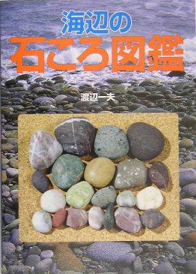 【送料無料】海辺の石ころ図鑑