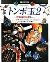 【送料無料】トンボ玉(2)
