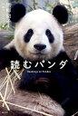 読むパンダ [ 黒柳 徹子 ]