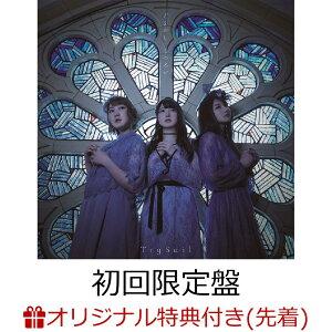 【楽天ブックス限定先着特典】ごまかし/うつろい (初回限定盤 CD+DVD) (オリジナルブロマイド付き)