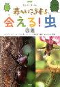 会える!虫図鑑 NHKモリゾー・キッコロ森へいこうよ! [ 日本放送協会 ]